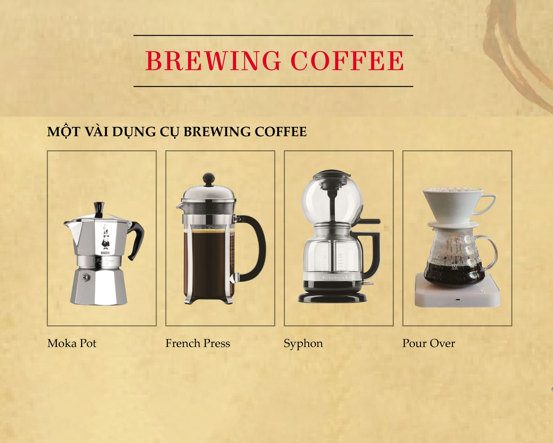 Kiến thức chung về cà phê